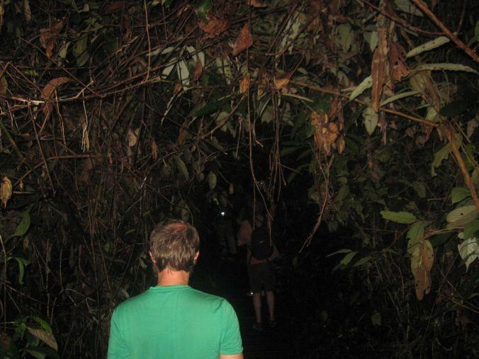 Nattvandring! The night walk!