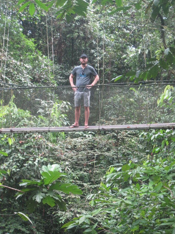 "Dag 5 och ""Canopy Skywalk"" där vi såg aporna! Day 5 and the canopy skywalk where we saw monkeys!"