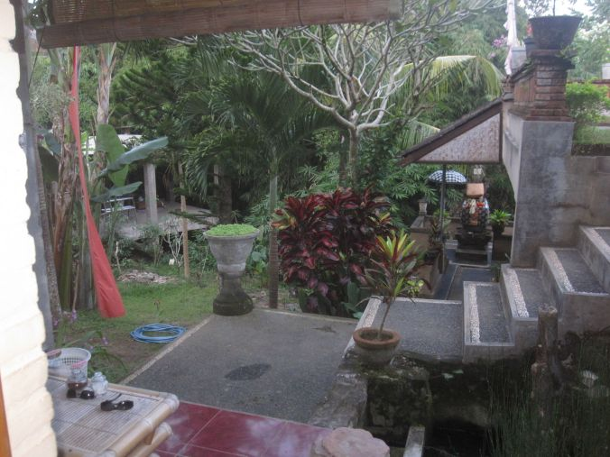 Vi har flyttat till en balinesisk familj som har ett homestay här i Ubud och det här är vår fantastiska trädgård! We have moved in with a Balinese family that have a homestay here in Ubud and this is our wonderful garden!