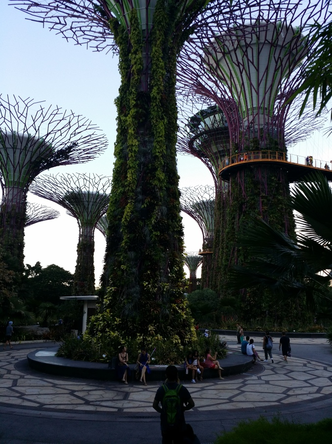 """Supertree groove"" som kan hittas i ""Gardens of the Bay"". Supertree groove that can be found in Gardens of the bay!"