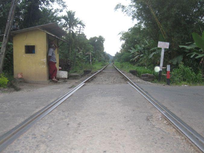 Henawala järnvägsövergång! Henawala railway crossing!