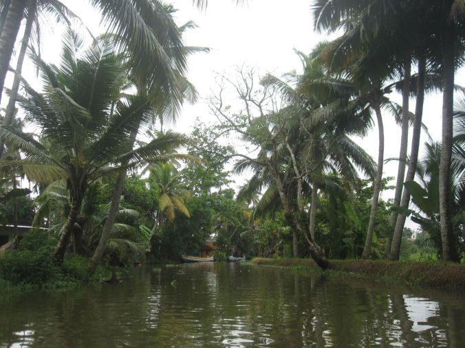 Dags för paddling i Kerala backwaters! Time for kayaking in Kerala Backwaters!