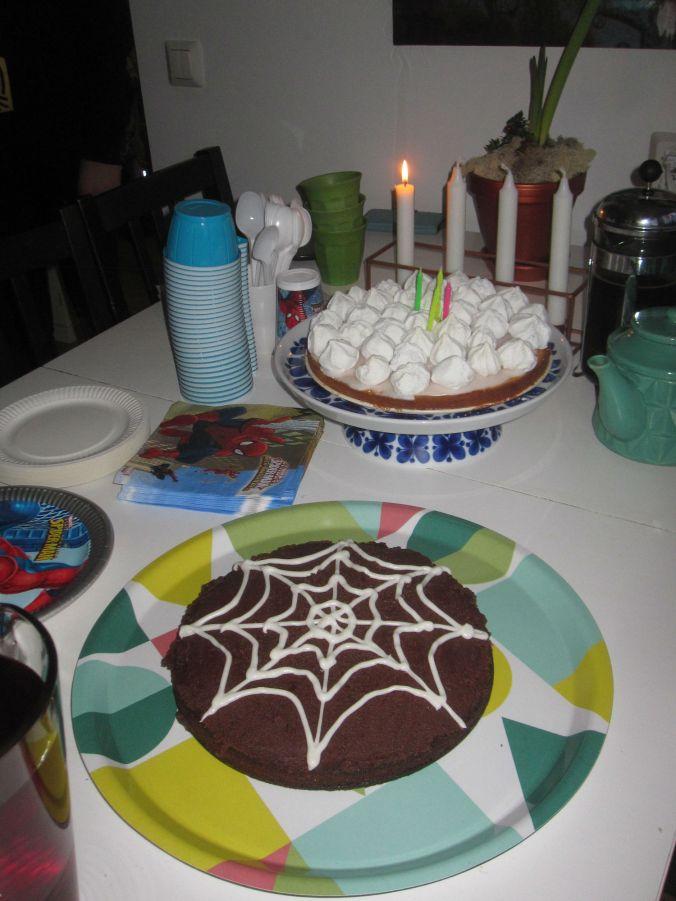 Födelsedagskalas! Birthday party!