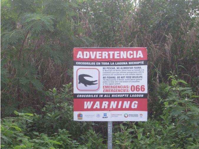Det varnas flitigt för krokodiler runt lagunen, men vi lyckades inte se någon! There was a lot of warnings for crocodiles around the lagoon, but we did not see any!